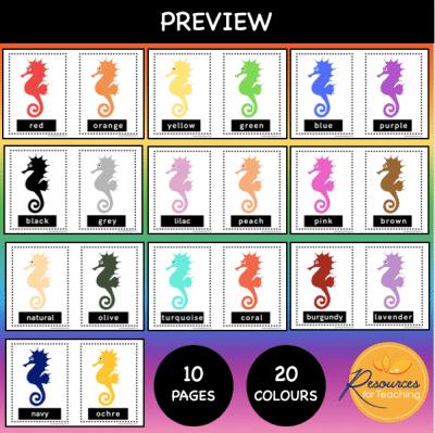 Colour Seahorse Posters